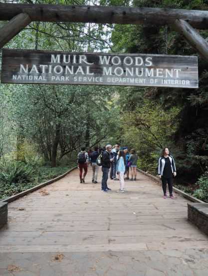 Visite du parc des séquoias