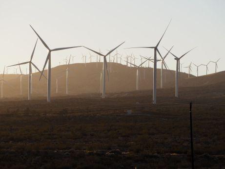En arrivant en Californie une forêt d'éoliennes...