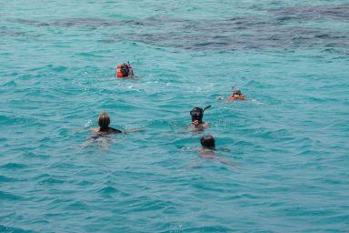 Objectif rejoindre l'îlot à la nage