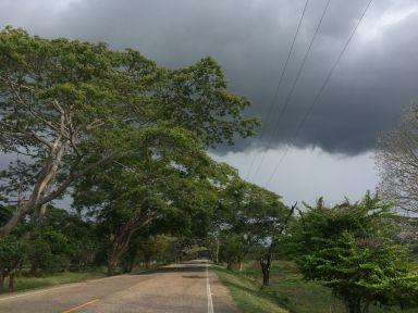 Vite l'orage gronde !