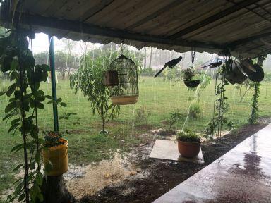 A l'abris de la pluie