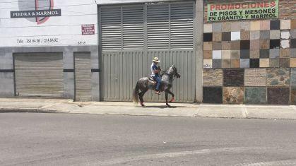 La culture équine est très forte en Colombie même en ville !