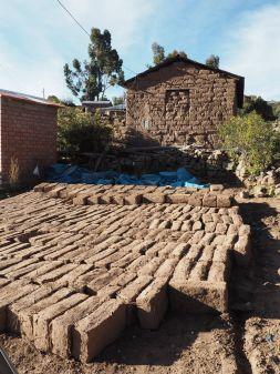 Fabrication de briques de terre