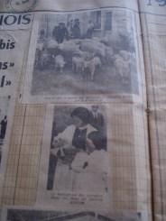 1962 FL Dauphiné Libéré