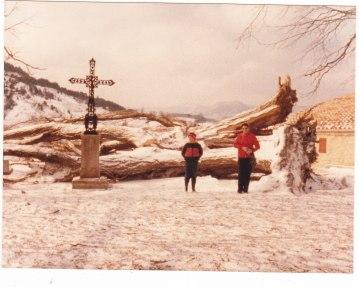 Peuplier tombé Pâques 1986