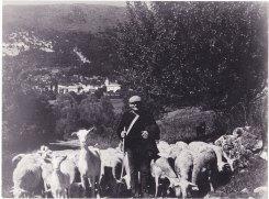 Marcel Moulon le berger