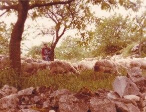 06.1983 Josette la bergère