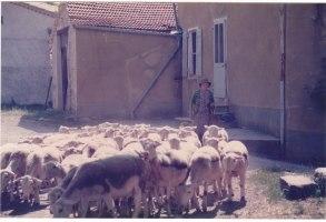 Josette la bergère 14.07.1986