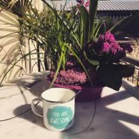café au soleil