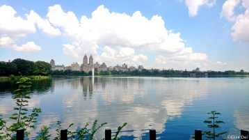 3) Central Park 2