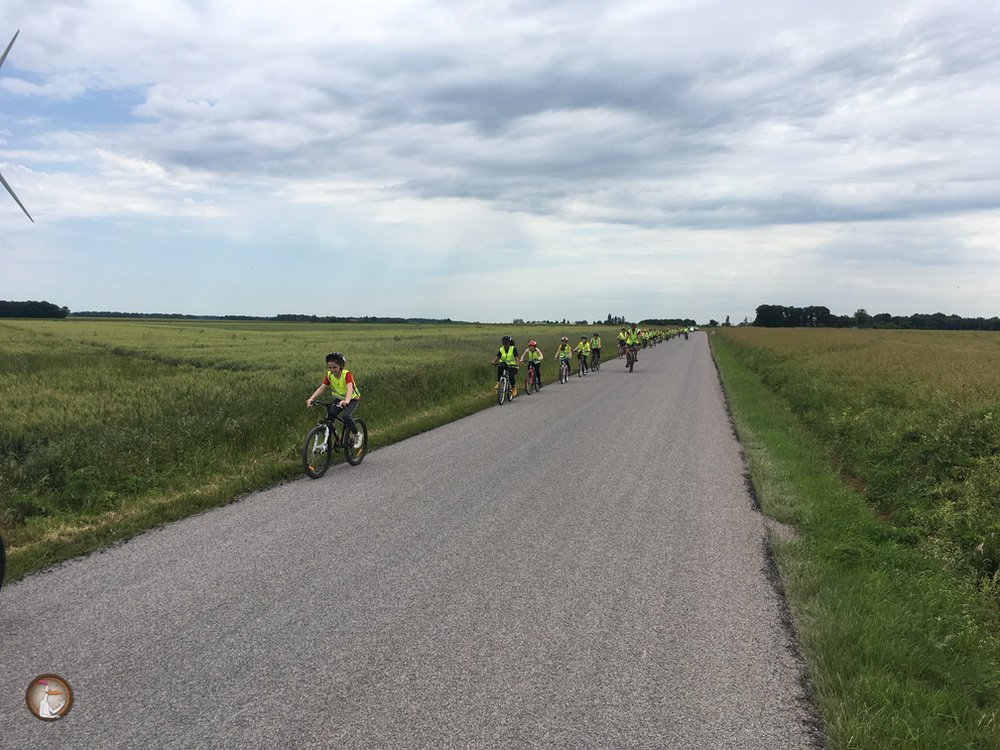 Sortie Vélo - 2019082