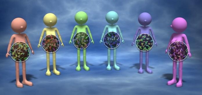 microbiote irréversible