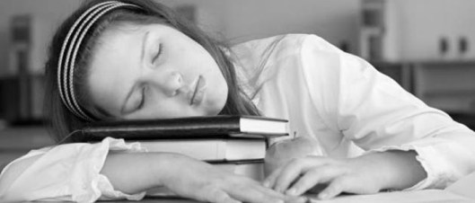 Schoolgirl is sleeping with her books at lesson