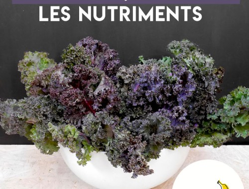 podcast alimentation vivante crue nutriment