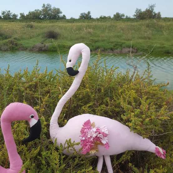 détails-flamants-roses