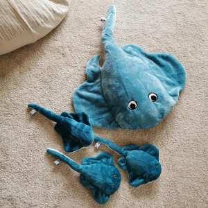 grande-raie-bleue-et-petites-raies-turquoise