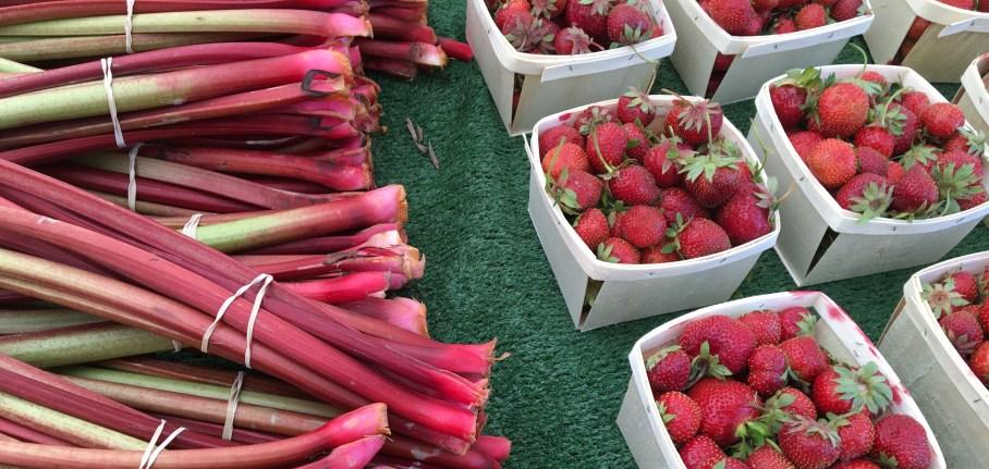 rhubarb-market