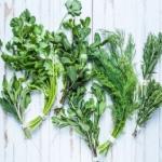 herbes aromatiques de Provence utilisées pour des plats savoureux