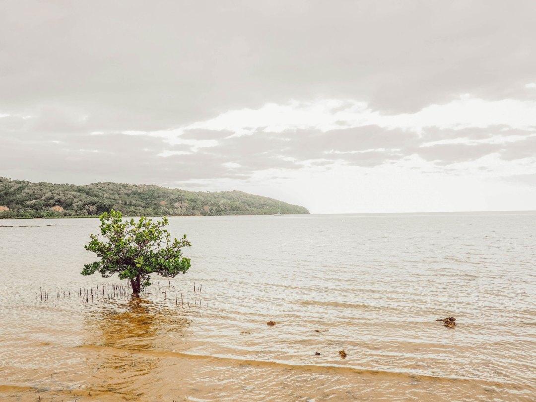 La Nouvelle-Calédonie et l'intérieur des terres - Partie 2 - Lesdeuxchouettes.fr