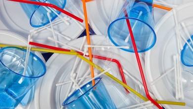 Photo de Pailles, gobelets… les plastiques à usage unique non grata en Europe