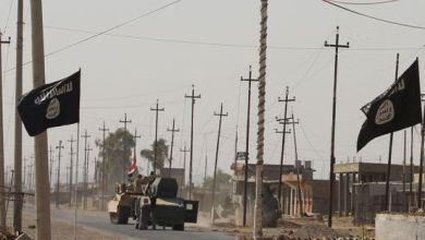 Photo de Irak. Onze français condamnés à mort pour appartenance à l'EI