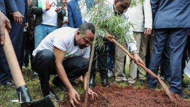 Photo of Un record, l'Ethiopie plante 353 millions d'arbres en une seule journée