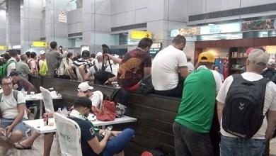 Photo de Des centaines d'Algériens sont bloqués au Caire