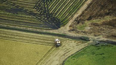 Photo of Famine et réchauffement climatique.  Le rapport alarmant du GIEC