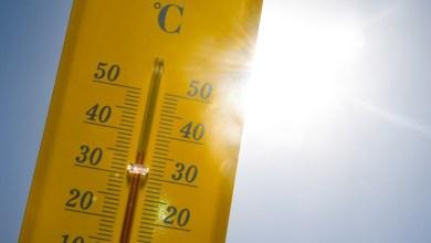 Photo de Juillet 2019, mois le plus chaud jamais mesuré dans le monde