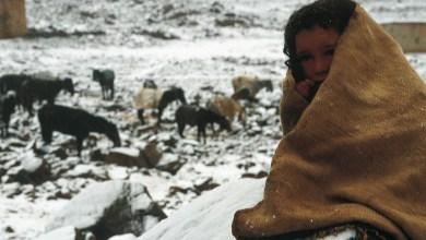 Photo de Vague de froid: Plus de 2.400 cadres médicaux et paramédicaux mobilisés