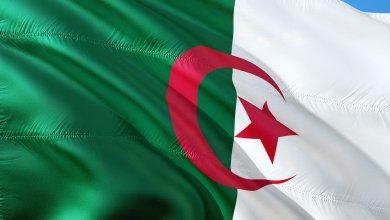 Photo de Algérie. Le quator Bouteflika-Hanoune-Tertag-Toufik rejugé en appel