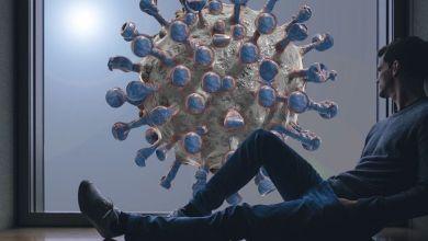 Photo de Covid-19: un virus désormais saisonnier?
