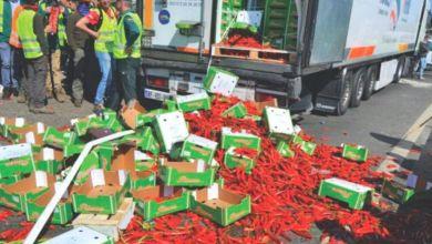 Photo de Camion marocain vandalisé en Espagne: Les dommages évalués à 18.000 euros