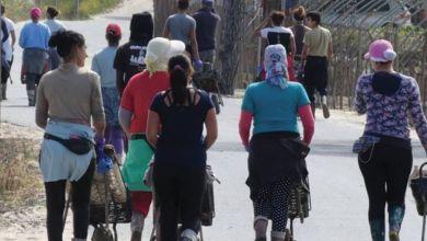 Photo de Saisonnières marocaines : l'Exécutif andalou aux petits soins