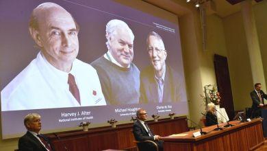 Photo de Prix Nobel de médecine : trois lauréats primés