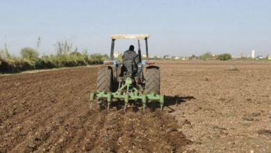 Photo de Campagne agricole : des premiers signaux positifs