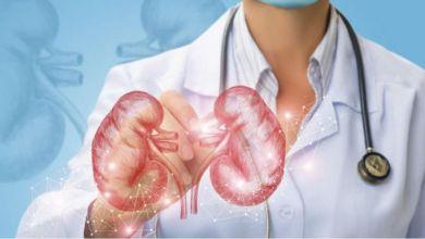 Photo de Urologie : les experts décortiquent les méfaits du tabagisme