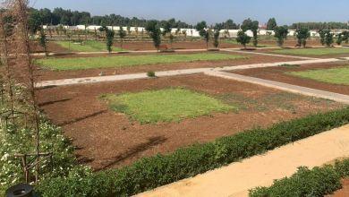 Photo de Fès : le jardin botanique de Oued Fès prend forme