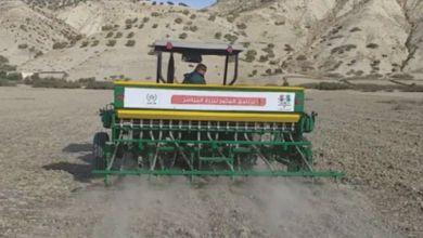 Photo de Programme OCP Al Moutmir : le semis direct confirme son efficacité