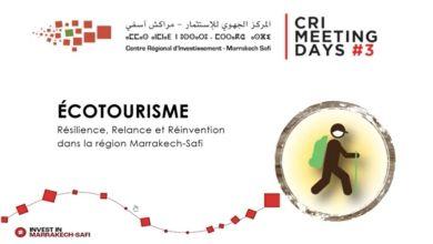 Photo de Webinaire CRI MEETING DAYS. Troisième édition, sous le thème ''Ecotourisme : Résilience, Relance et Réinvention''