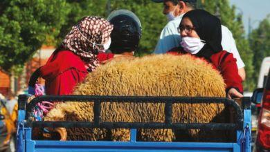 Photo de Covid-19 : l'Aïd Al-Adha sous haute surveillance