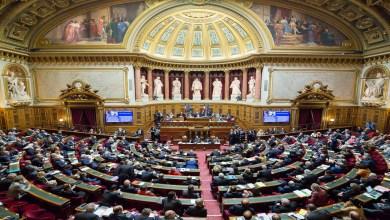 Photo de France: le Sénat adopte le projet de loi sur l'extension du pass sanitaire