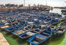 Photo de Pêche : le dispositif se renforce contre la pêche illicite