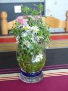Mon 1er bouquet de l'année