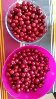 Miam les cerises