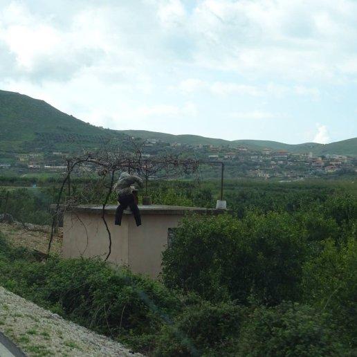 fin albanie00051646750626..jpg