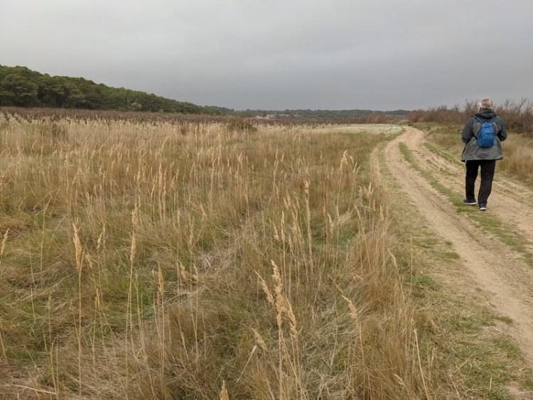 Parc naturel de narbonnaise