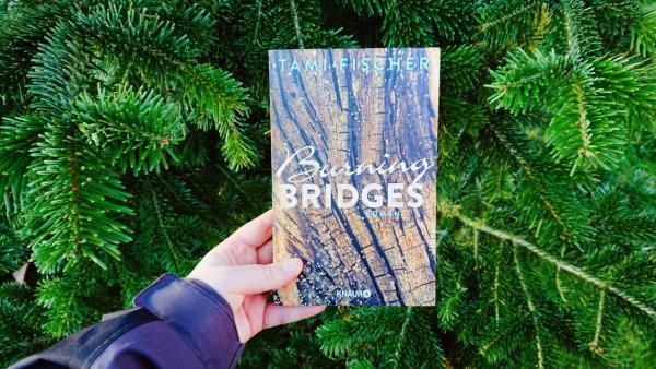 Tami Fischer Burning Bridges
