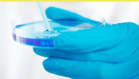 Gesundheitsschädlicher Bio-Feinstaub