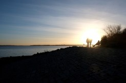 Förde zwischen Bülk und Strande